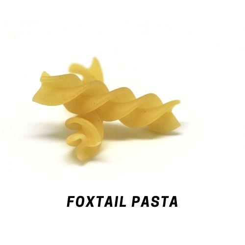 Foxtail Millet Pasta