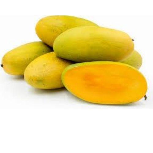 Mango Chausa (semi ripe)