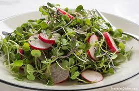 Salad Mix with Microgreens